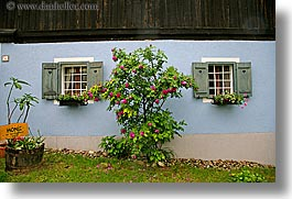 europe, flowers, horizontal, slovenia, styria, trees, windows, photograph
