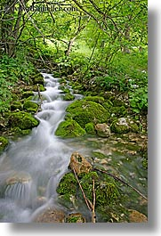 europe, flowing, forests, lush, slovenia, slow exposure, stream, trees, triglavski narodni park, vertical, photograph