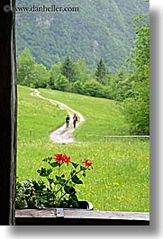 dirt, europe, flowers, geraniums, hikers, hiking, roads, slovenia, triglavski narodni park, vertical, photograph