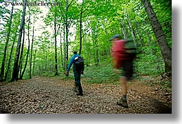 europe, forests, hikers, hiking, horizontal, lush, slovenia, slow exposure, trees, triglavski narodni park, photograph