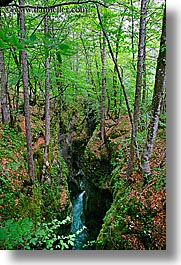 europe, forests, gorge, lush, rivers, slovenia, triglavski narodni park, vertical, photograph