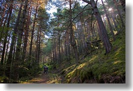 activities, ansovell, europe, forests, hikers, hiking, horizontal, nature, people, plants, sky, spain, sun, trees, photograph