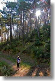 activities, ansovell, europe, forests, hikers, hiking, nature, people, plants, sky, spain, sun, trees, vertical, photograph