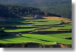 estamariu, europe, green, hillside, horizontal, spain, terraced, photograph
