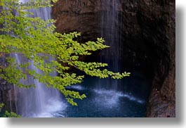 branches, europe, horizontal, ordesa, spain, trees, waterfalls, photograph