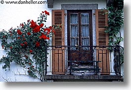 chamonix, europe, horizontal, roses, switzerland, windows, photograph