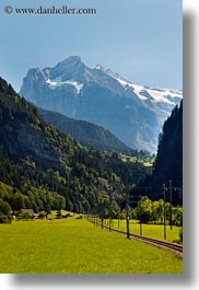 europe, grindelwald, mountains, nature, snowcaps, switzerland, trees, vertical, photograph