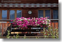 colorful, europe, geraniums, horizontal, kandersteg, scenics, switzerland, photograph