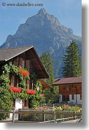 europe, flowers, houses, kandersteg, scenics, switzerland, vertical, photograph