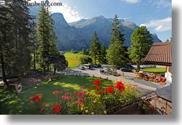 europe, flowers, horizontal, kandersteg, mountains, switzerland, wald hotel doldenhorn, photograph