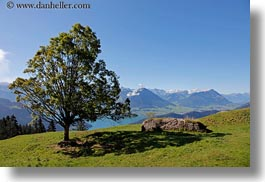 europe, horizontal, landscapes, lucerne, mt rigi, switzerland, trees, photograph