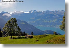 europe, horizontal, landscapes, lucerne, mountains, mt rigi, nature, snowcaps, switzerland, trees, photograph