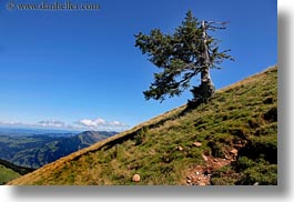 europe, horizontal, lucerne, mountains, mt rigi, switzerland, trees, photograph