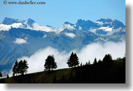clouds, europe, fog, horizontal, lucerne, mountains, mt rigi, nature, sky, snowcaps, switzerland, trees, photograph