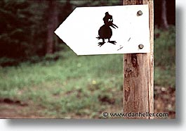 ducks, europe, horizontal, signs, switzerland, photograph