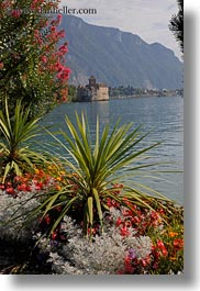castles, chateau de chillon, chillon, europe, montreaux, plants, switzerland, vertical, photograph