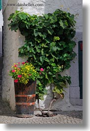 barrels, europe, flowers, montreaux, switzerland, vertical, photograph