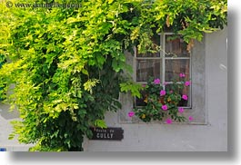 europe, flowers, horizontal, montreaux, switzerland, windows, photograph