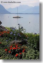 boats, europe, flowers, montreaux, switzerland, vertical, photograph
