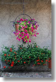 europe, flowers, montreaux, switzerland, vertical, walls, photograph