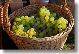 baskets, europe, grapes, horizontal, montreaux, switzerland, white, photograph