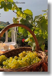 baskets, europe, grapes, montreaux, switzerland, vertical, white, photograph