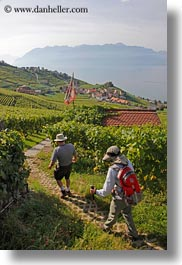 europe, hikers, montreaux, switzerland, vertical, villette, vineyards, photograph