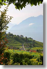 europe, lakes, montreaux, switzerland, towns, vertical, villette, vineyards, photograph