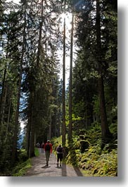 europe, forests, hikers, hiking, murren, people, switzerland, vertical, photograph