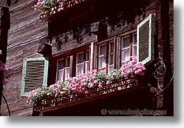 europe, flowery, horizontal, switzerland, windows, zermatt, photograph