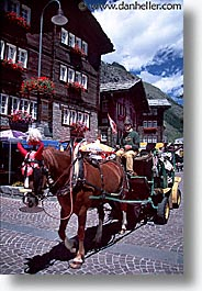 carriage, europe, horses, switzerland, vertical, zermatt, photograph