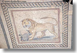 architectural ruins, ephesus, europe, horizontal, lions, mosaics, turkeys, photograph