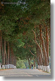 architectural ruins, ephesus, europe, lined, roads, trees, turkeys, vertical, photograph