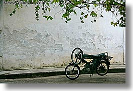 europe, fethiye, horizontal, leaves, motorcycles, turkeys, photograph