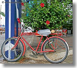 bicycles, europe, fethiye, hibiscus, horizontal, red, turkeys, photograph