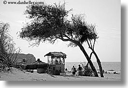 beaches, black and white, europe, horizontal, kalkan, leaning, trees, turkeys, photograph