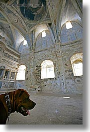 architectural ruins, churchchurch, churches, dogs, europe, kaya koy, ruin, turkeys, vertical, photograph