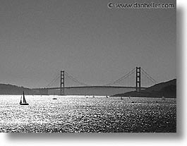 black and white, fujipix, golden gate bridge, sailboats, horizontal, black and white, fujipix, golden gate bridge, sailboats, photograph