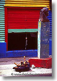 argentina, buenos aires, dogs, la boca, latin america, painted town, sleeping, vertical, photograph