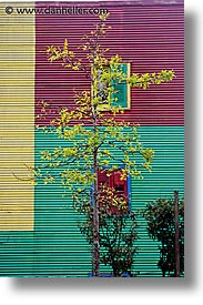 argentina, buenos aires, la boca, latin america, painted, painted town, trees, vertical, walls, photograph