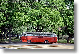 argentina, buenos aires, bus, horizontal, latin america, trees, photograph