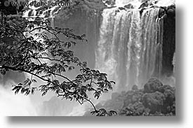 argentina, black and white, falls, horizontal, iguazu, latin america, water, waterfalls, photograph