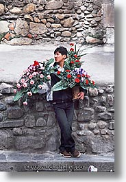 bolivia, for, la paz, latin america, people, roses, sales, vertical, photograph