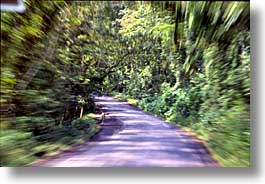 artsie, costa rica, horizontal, latin america, roads, speeding, photograph