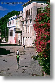bicycles, caribbean, city scenes, cuba, havana, island nation, islands, latin america, riding, south america, vertical, photograph