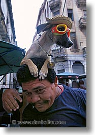 caribbean, cats, cuba, dogs, havana, island nation, islands, latin america, south america, vertical, photograph