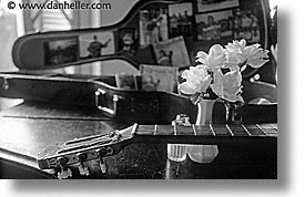 black and white, caribbean, cuba, guitars, havana, horizontal, island nation, islands, latin america, music, roses, south america, photograph