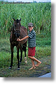 boys, caribbean, childrens, cuba, havana, horses, island nation, islands, latin america, people, south america, vertical, photograph