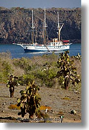bay, boats, ecuador, equator, faralote, galapagos, galapagos islands, islands, latin america, ocean, pacific ocean, sagitta, sails down, south pacific, vertical, water, photograph