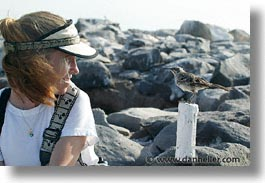 ecuador, equator, galapagos, galapagos islands, horizontal, islands, jills, latin america, mockingbird, pacific ocean, people, south pacific, womens, photograph